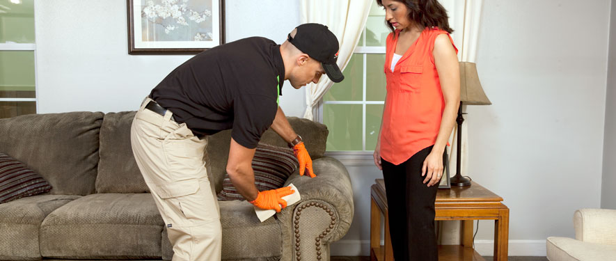 Danvers, MA carpet upholstery cleaning